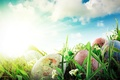 Picture the sky, grass, clouds, rays, flowers, nature, holiday, eggs, spring, Easter, Easter