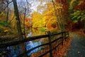 Picture park, river, forest, trees, Nature, fall, autumn, autumn, trees, forest, view, landscape, nature, scenery, landscape