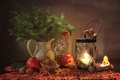Picture nuts, tree, apples, protein, lantern
