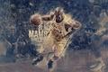 Picture Field, Figure, The ball, Basketball, Lakers, Kobe Bryant, Player, Black Mamba, Spalding