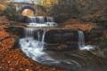 Picture autumn, leaves, bridge, river, waterfall, cascade, Bulgaria, Bulgaria