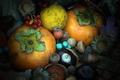 Picture autumn, texture, the fruit, acorn, persimmon, walnut, chestnut