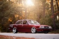 Picture light, tuning, road, trees, toyota, Cressida, classic, Toyota