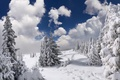 Picture snow, mountains, winter, nature, trees, forest, clouds, the sky, landscape