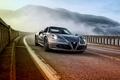 Picture Alfa Romeo, Alfa Romeo, Spider, US-spec, 2015, 960