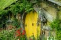 Picture Flowers, Plants, Nature, Flowers, The hobbit, Hobbit, Yard