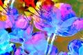 Picture flower, line, nature, rendering, paint, petals, touch