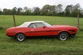 Picture Ford, nature, 1973, Muscle car, Mustang, classic, Mustang, Ford
