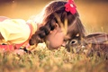 Picture hare, friendship, rabbit, girl