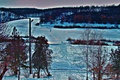 Picture snow, trees.cold, landscape, winter