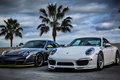 Picture palm trees, clouds, palm, white, white, front, Porsche, Porsche, 911, the sky, silver, sky, silver