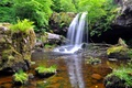 Picture waterfall, trees, forest, stones, stream
