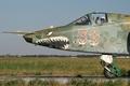 Picture pilot, Rook, attack, Su-25, Su-25