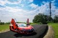 Picture front view, DMC aventador, aventador, Lamborghini, LP900SV, road, trees, lamborghini, orange, orange, the sky, clouds, ...