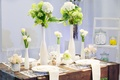 Picture vases, flowers, white, serving, glasses, tulips