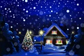 Picture New Year, holiday, snow, nature, winter, home, Christmas, New Year, Christmas, night, tree, Christmas, landscape