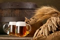Picture foam, beer, ears, mugs, barrel, burlap