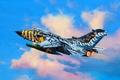 "Picture art, painting, jet, Tornado ECR ""Tigermeet 2011"""