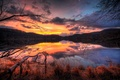 Picture reflection, trees, lake, water, the evening, clouds, the sky, branches, forest, sunset