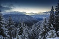 Picture snow, mountains, nature, winter, panorama, Olympic National Park, clouds, forest