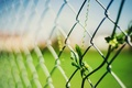 Picture widescreen, leaf, leaves, blur, HD wallpapers, Wallpaper, leaf, leaves, fence, full screen, the fence, background, ...