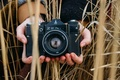 Picture hands, the camera, field, retro, spikelets