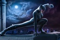 Picture cat, superhero, the city, latex, the moon, night, Catwoman, woman, costume