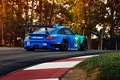 Picture 911, Porsche, GT3, RSR, Team, Hawks, Competition, Widebody, Sportcar, Track, Spoiler, Trees