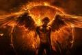 Picture hands, wings, art, guy, the demon, angel, Imaliea, fire