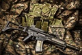 Picture weapons, HK G36C, assault rifle, machine, camouflage