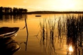 Picture lake, boat, Sepia, forest, sunset