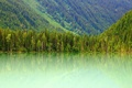 Picture Kinney Lake, mountains, Mount Robson, slope, Canada, lake, Canada, forest