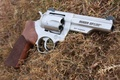 Picture 357 Magnum, GP100, revolver, revolver, Ruger, grass