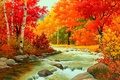 Picture stones, foliage, water, Autumn, the bushes, river, forest