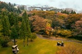 Picture Park, nature, trees, Japan, Open Air Museum, Hakone, photo, grass