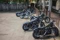 Picture bike, Custom, classic, Dyna, v-twin, Harley-Davidson, Street, american, Sportster