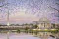 Picture water, flowers, lake, pond, Park, spring, Robert Finale, flowering, obelisk, painting, gazebo with columns, spring, ...