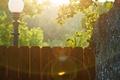 Picture lamp, city, tree, mood, street, lamp, lights, lantern, street, fences, lamps
