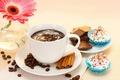 Picture flowers, coffee, food, chocolate, Cup, cake, cake, flower, dessert, cup, chocolate, gerbera, coffee, dessert, gerbera