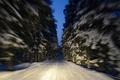 Picture winter, road, macro, snow, trees, movement, Finland, Finland