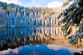 Picture lake, spruce, snow, the sky, winter, trees, forest