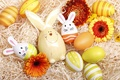 Picture flowers, eggs, spring, Happy, flowers, Easter, eggs, Easter, decoration, spring