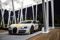 Picture Supersport, hypercar, Pur Blanc, supercar, Bugatti Veyron, Andrew Link