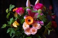 Picture leaves, roses, bouquet, chrysanthemum