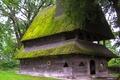 Picture house, Yasinya, Ukraine, trees, moss, Transcarpathia