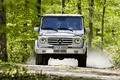 Picture mercedes-benz, Gaelic, forest
