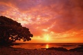 Picture sea, shore, wallpaper, side, sea, sunset, red sunset