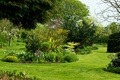 Picture flowers, garden, bench, trees, the bushes, UK, greens, grass, Dutton, Bluebell Cottage Garden