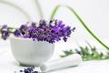 Picture flowers, purple, lavender, mortar