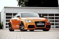 Picture Rieger, 2011, Coupe, Audi, Audi, coupe